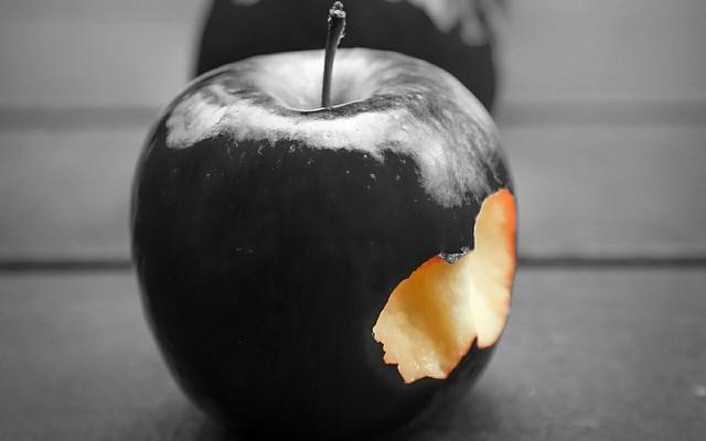 Zakazany owoc …