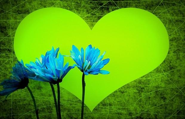 Moje serce jest zielone, a dusza niebieska …