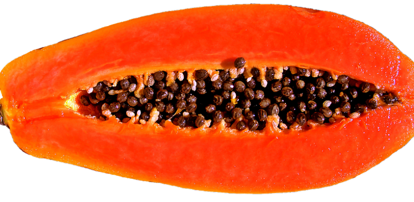 Papaja. Życiodajny owoc