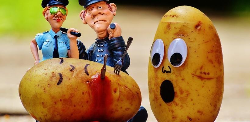 Ziemniak – czego o nim nie wiemy?