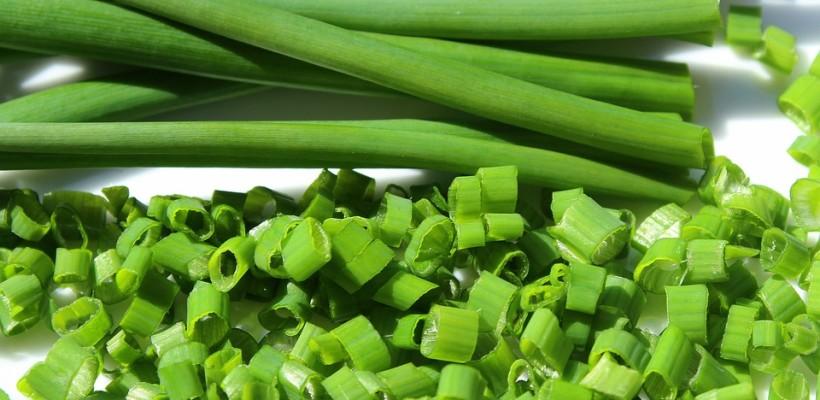 Szczypiorek – zielona strona zdrowia
