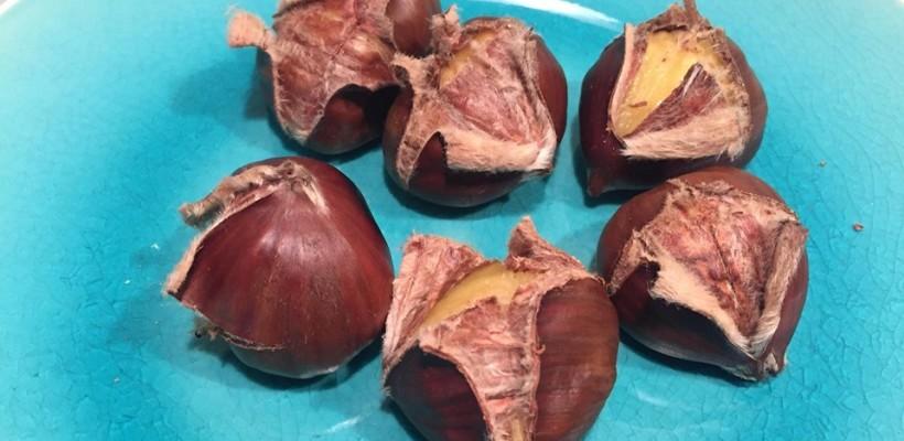 Kasztany jadalne – delicja w jesiennym menu