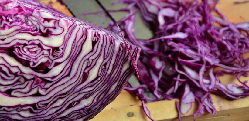 Kapusta – warzywo doskonałe w każdym calu