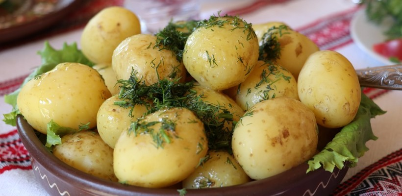 Ziemniaki – balsam dla jelit
