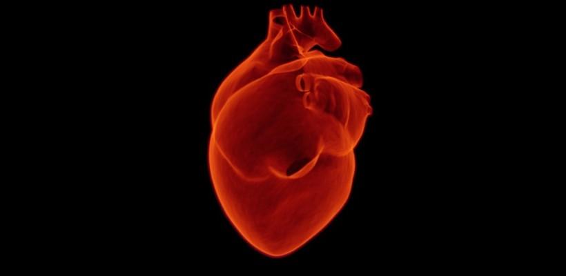 Jak zapobiegać zawałowi serca?